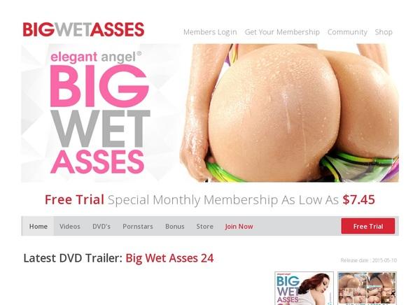 Big Wet Asses Coupon